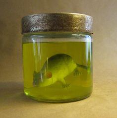 Formaldehyde Brain Formaldehyde: A Poison...